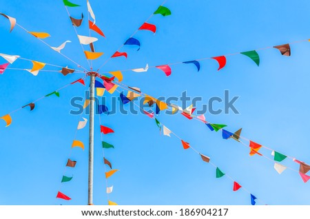 Color party flags