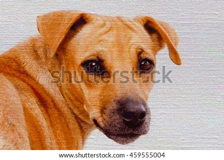 color pencil drawing brown dog on white canvas.