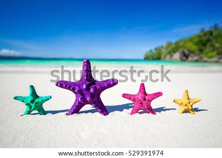 Color starfishes on sandy beach, focus on purple seastar, travel concept