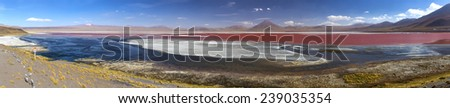 Colorado Lagoon Desert panorama, Altiplano, Bolivia - stock photo
