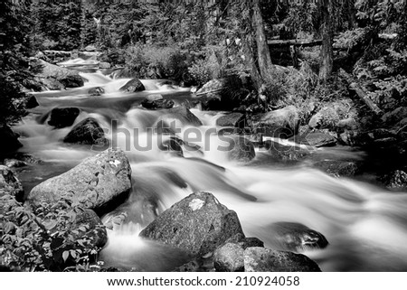 Colorado Rocky Mountain stream with cascading water falls coming down from the Colorado continental divide.   - stock photo
