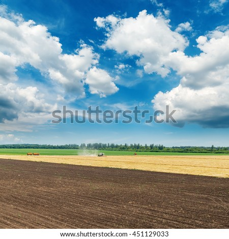 colored agriculture fields and clouds in blue sky