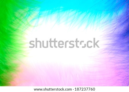 Colored feathers making a frame on white paper - stock photo