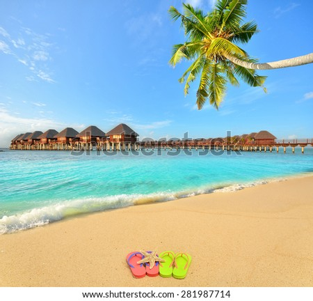 Colored flip flops and starfish at tropical golden sand beach -- Tropical beach vacation and travel concept   - stock photo