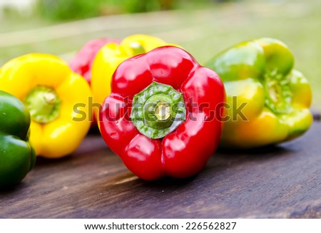 Colored Fresh Sweet Pepper