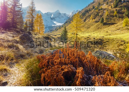Colored natural landscape in autumn