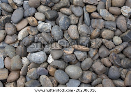 Colored sea pebbles background.  - stock photo