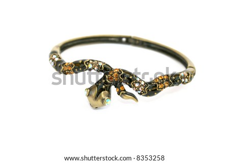 Colored snake bracelet isolated on the white.