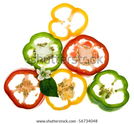 colored sweet peppers isolated - stock photo