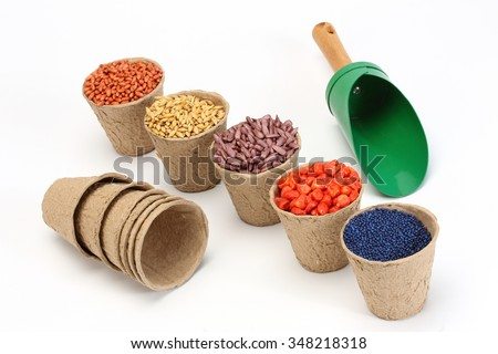 colored various sowing seed in paper pot - stock photo