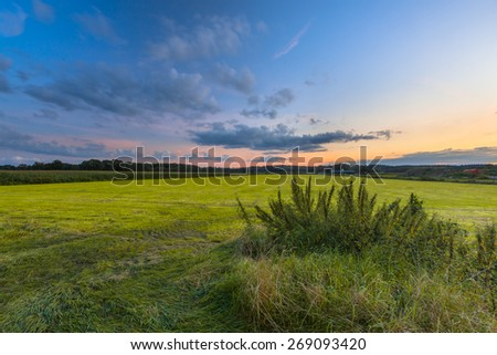 Colorful agricultural landscape with nettles and freshly mowed meadow under a beautiful sunset sky - stock photo