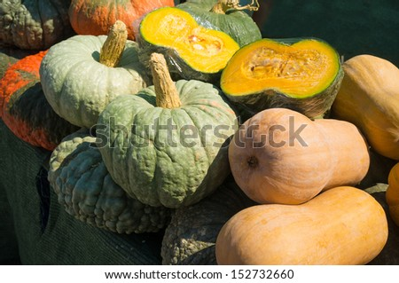 Colorful assortment of pumpkins at a market stall - stock photo