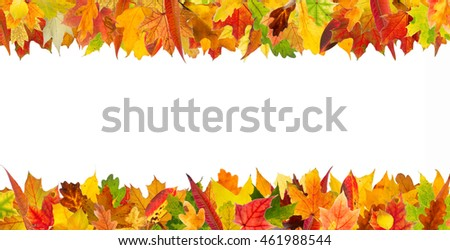 Colorful autumn different leaves frame, isolated on white background.