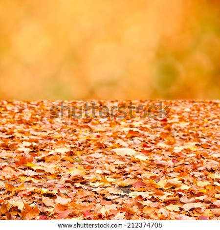 Colorful autumn fallen leaves on the ground and abstract bokeh of orange fall foliage background - stock photo