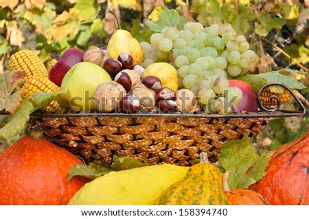 Colorful autumn fruits and vegetables decorative composed in dish - stock photo