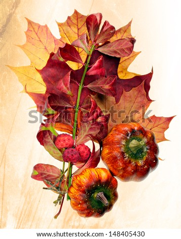Colorful autumn harvest and leaves isolated on white