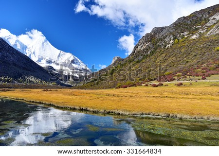 Colorful autumn in Yading national level reserve, Daocheng, Sichuan Province, China.