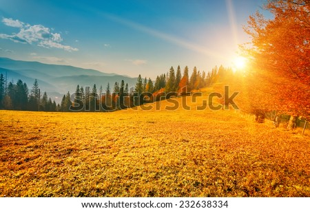 Colorful autumn landscape. Carpathian mountains, Ukraine, Europe. - stock photo