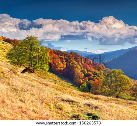 Colorful autumn landscape in mountains - stock photo