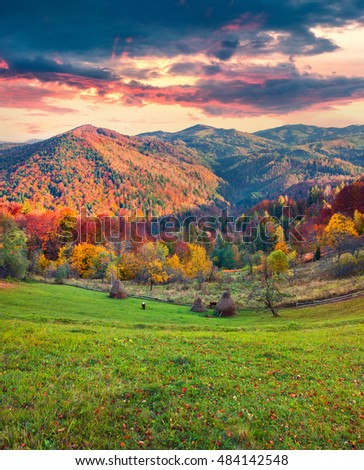 Colorful autumn landscape in the Carpathian mountains. Splendid sunset in the Roztoky village, Ukraine, Europe. Artistic style post processed photo.