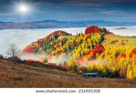 Colorful autumn landscape in the mountain village. Foggy morning in the Carpathian mountains. Sokilsky ridge, Ukraine, Europe. - stock photo