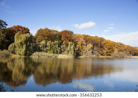 colorful autumn leaves on trees and pond reflection