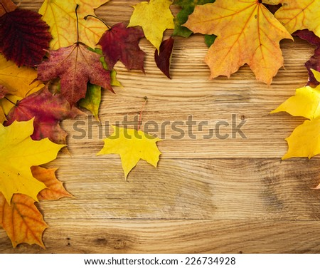 Colorful autumn leaves on wooden background. Vintage.