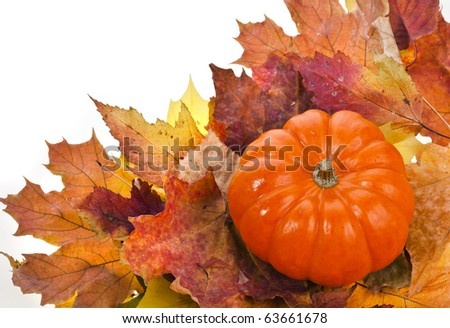 Colorful autumn leaves with Pumpkin - stock photo