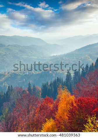 Colorful autumn morning in Carpathian mountains. Beautiful landscape on Sokilsky ridge, Bukovets' village location, Ukraine, Europe. Artistic style post processed photo.