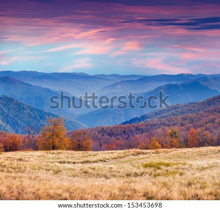 Colorful autumn morning in the mountains. Sunrise - stock photo