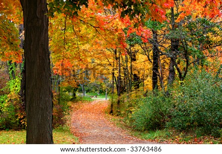 Colorful Autumn Scene