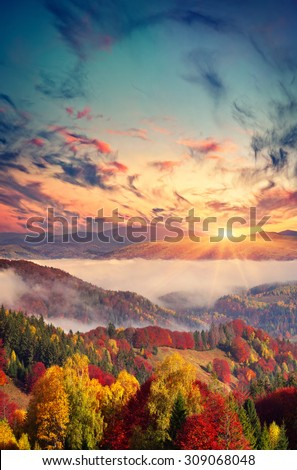 Colorful autumn sunset in the foggy mountains. - stock photo