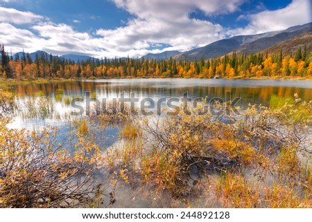 Colorful autumn taiga landscape behind still water of small lake with willow bushes in foreground, Hibiny mountains above the Arctic circle, Russia - stock photo