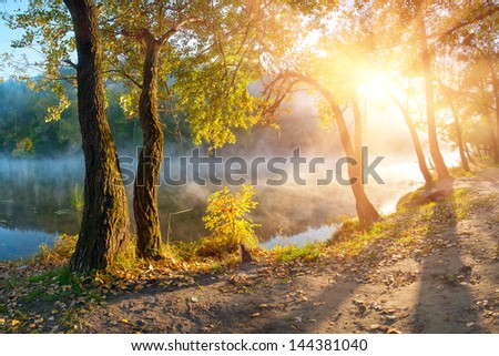 Colorful autumn trees and foliage on the banks rivers, season landscape - stock photo