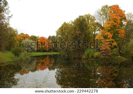 Colorful autumn trees on the pond, Catherine Park in Tsarskoe Selo, St. Petersburg, Russia.  - stock photo