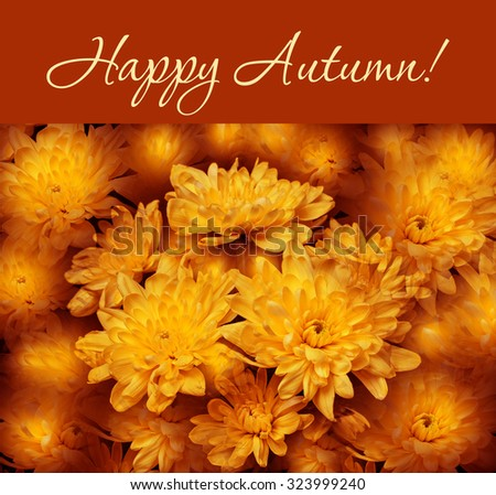 "Colorful autumn wallpaper, background. Floral chrysanthemums fantasy, double exposure artistic effect, soft blur style. ""Happy Autumn!"" greeting card - stock photo"