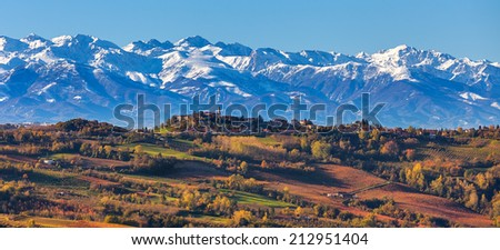 Colorful autumnal vineyards and snowy mountains on background in Piedmont, Northern Italy (panorama). - stock photo