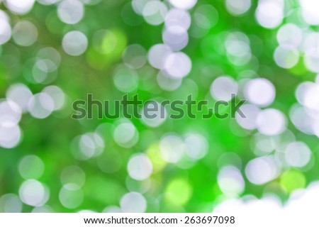 colorful background in green colors, the bokeh effect - stock photo