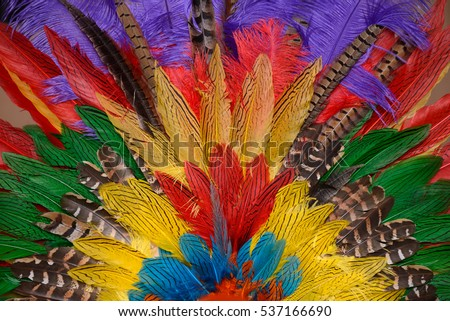 colorful background of dyed and natural feathers