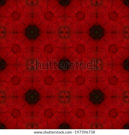 Colorful background pattern made from Greenwinged Macaw feathers