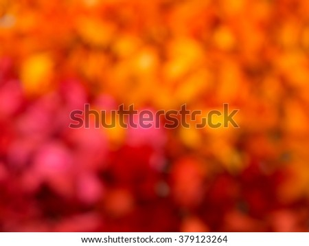Colorful background with de-focused.