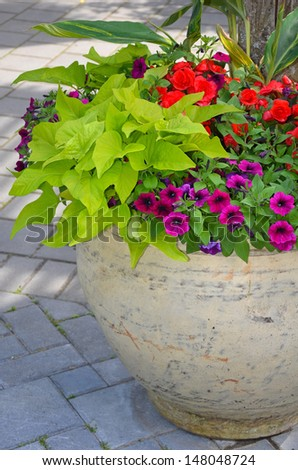 Colorful begonia and petunia flower planter on patio - stock photo