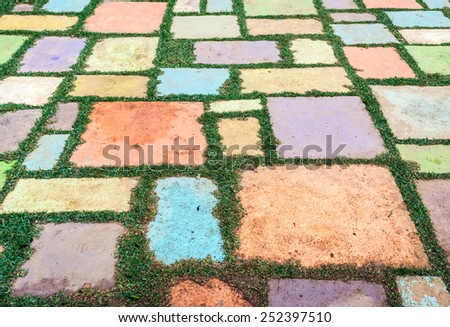 Colorful block ground of the botanical garden. - stock photo