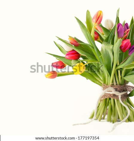 colorful bunch of fresh tulips, easter decoration