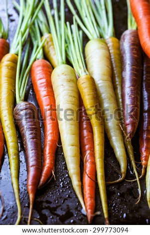 Colorful carrots on black background - stock photo