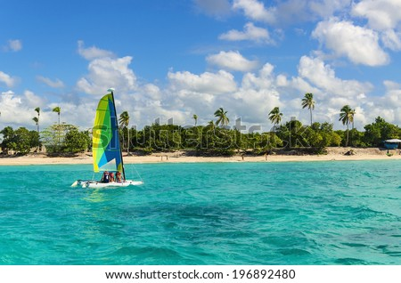 Colorful catamaran on azure water against blue sky and exotic palm trees, Caribbean Islands  - stock photo