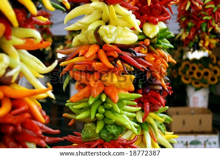 Colorful chili peppers on display at a farmers market