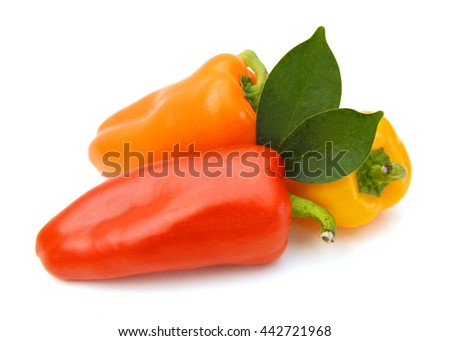 Colorful chilli peppers on white background