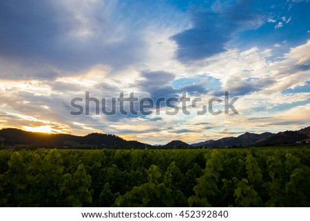 Colorful clouds at sunset over a Napa Valley vineyard. Vibrant, saturated sunset. Blue, purple, orange clouds. Looking down on rows of a California vineyard with mountains in the background. - stock photo