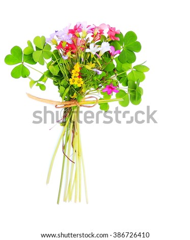 Colorful Clover Bouquet. Five colors of clover flowers with leaves and tied with a grass blade on white background      - stock photo